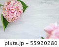 Pastel colored Hydrangea Flowers on White painted table 55920280