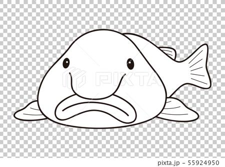 Angler Fish, deep-sea-angler-fish-Colouring-Pages: Deep Sea Angler ...   333x450