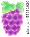 楕円粒のブドウ・紫・葉あり 55931920