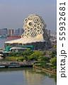 台湾 高雄 ライトレール 55932681