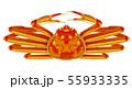 ズワイガニ 55933335