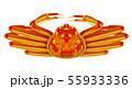 ズワイガニ 55933336