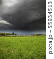 The Summer countryside landscape with a storm cloud 55934513