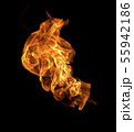 Fire flames on black background 55942186