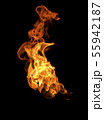 Fire flames on black background 55942187