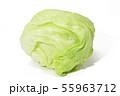 レタス (深度合成) 55963712