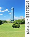 青空の千葉ポートタワー 55976214