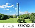 青空の千葉ポートタワー 55976215