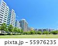 爽やかな青空のマンション街 55976235