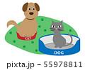 犬のベッドが猫に取られた 55978811