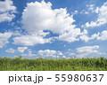 青空と雲と草原の背景素材 暑中見舞い テンプレート 55980637
