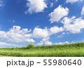 青空と雲と草原の背景素材 暑中見舞い テンプレート 55980640
