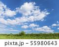 青空と雲と草原の背景素材 暑中見舞い テンプレート 55980643