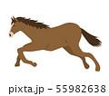 走る馬 55982638