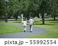 シニア 夫婦 散歩 55992554