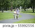 シニア 夫婦 散歩 55992556