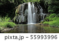 園田の滝 55993996