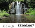 園田の滝 55993997