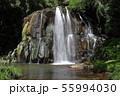 園田の滝 55994030