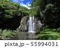 園田の滝 55994031