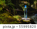 Plastic bottle blue cap with fresh drinking water on a background of green forest stands on a stone 55995820