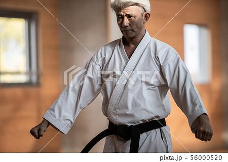 karateka 56000520