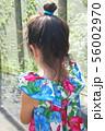南国の少女の後ろ姿 56002970