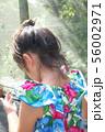 南国の少女の後ろ姿 56002971