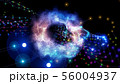 56004937