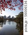湖 公園 アパート 56006536