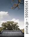 韓国 伝統家屋 屋根 56006564