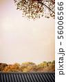 韓国 伝統家屋 韓屋 56006566