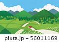 田舎道 夏 56011169