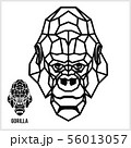 Abstract linear polygonal head of a gorilla. Vector. 56013057