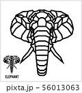 Abstract linear polygonal head of a elephant. Vector. 56013063
