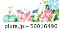 ブログ用ヘッダ画像あさがお 56016496
