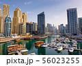 Dubai marina with boats and buildings, United Arab 56023255