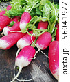harvest ripe radishes with green leaves on the table 56041977