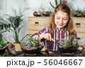 diy florarium home gardening class girl succulents 56046667