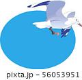 青空と鴎 56053951