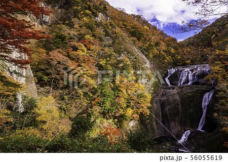 (茨城県)袋田の滝 紅葉 56055619