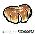 クリームパン-カラー 56066658