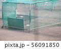 バッティング練習のケージ 56091850