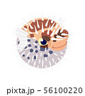 vector flat cartoon animal clip art 56100220