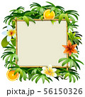 Vector Bamboo Frame with Tropical Flowers 56150326