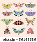 Stickers with butterflies 56168636