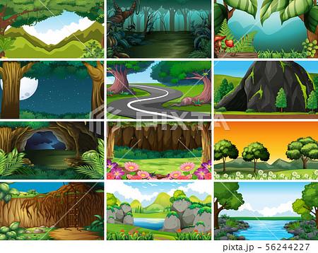 Empty, blank landscape nature scenes 56244227