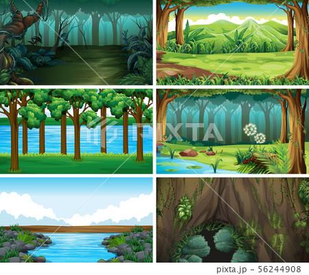 Empty, blank landscape nature scenes 56244908