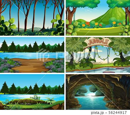 Empty, blank landscape nature scenes 56244917