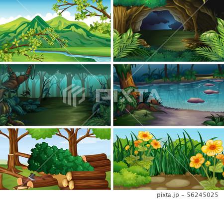 Empty, blank landscape nature scenes 56245025